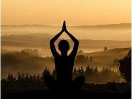 Cours de Yoga 2020